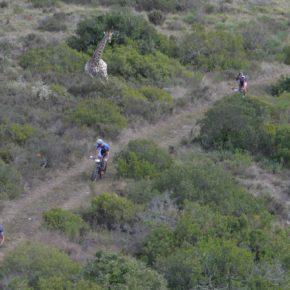 Steady start Groen/Boelen en Mos/Rood in Cape Pioneer